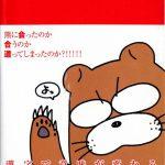 これまでに読んだ本から(10冊目):【ビミョーな日本語】